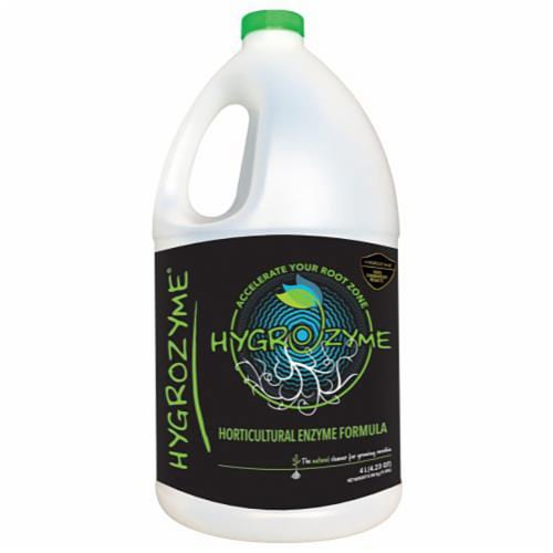 Mac Sports Heavy Duty Big Comfort Quad XL Folding Outdoor Camping Chair, Red Perspective: front