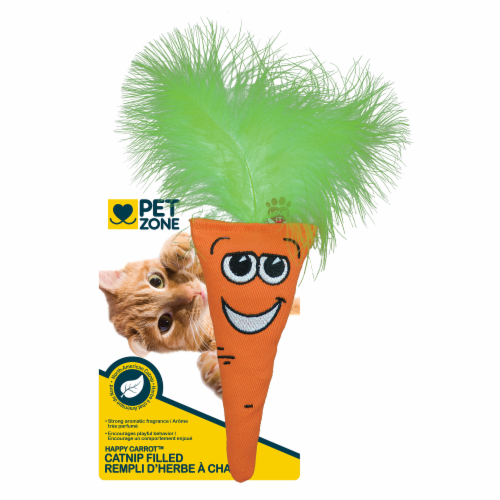 Pet Zone® Happy Carrot Catnip Filled Toy Perspective: front