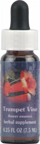 Flower Essence  FES Quintessentials™ Trumpet Vine Supplement Dropper Perspective: front
