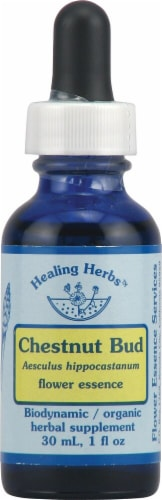 Flower Essence Healing Herbs Organic Chestnut Bud Herbal Supplement Perspective: front