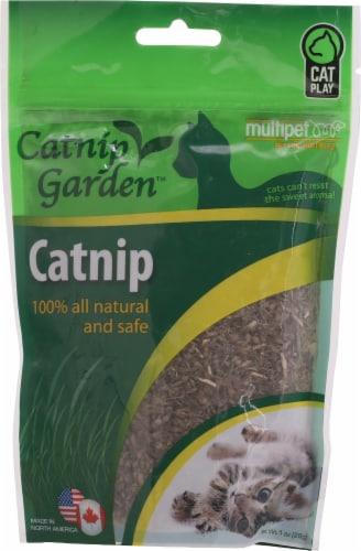 Multipet Cat Garden Catnip Perspective: front
