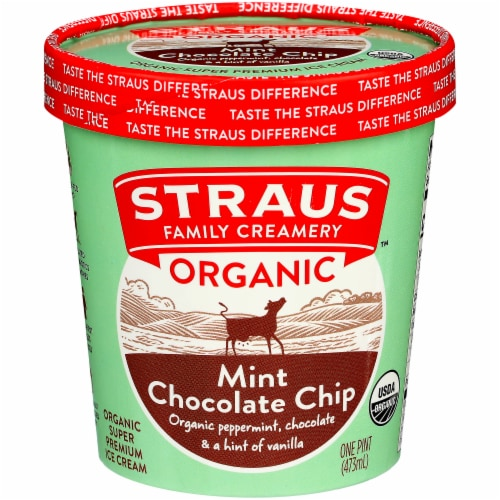 Straus Family Organic Mint Chocolate Chip Ice Cream Perspective: front