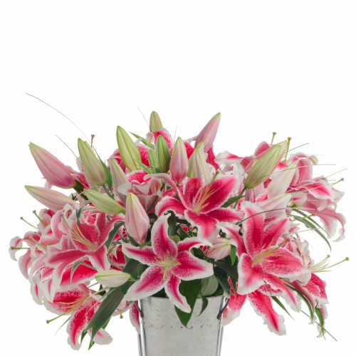 12-Stem Stargazer Lilies with Beargrass (Approximate Delivery is 1-3 Days) Perspective: front