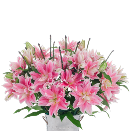10-Stem Rose Lilies with Ponytail (Approximate Delivery is 1-3 Days) Perspective: front