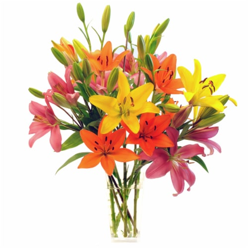 10stem Rainbow Royal Lilies (Approximate Delivery is 1-3 Days) Perspective: front