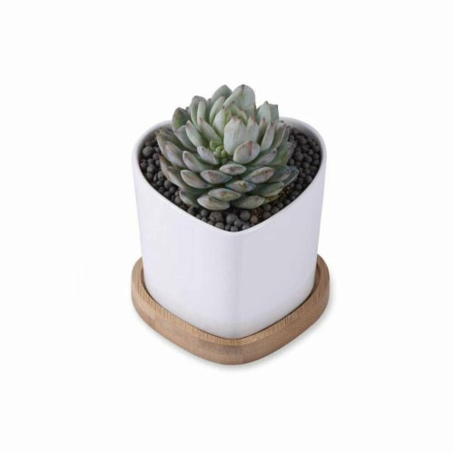 Cheungs 5658WT Rippled Ceramic Planter, White Perspective: front