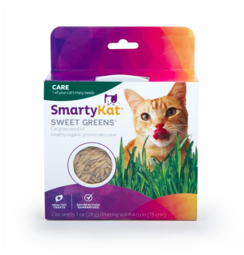 SmartyKat Sweet Greens Cat Grass Kit Perspective: front