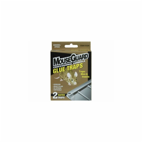 Kole Imports LL253-24 MouseGuard Baited Glue Mouse Traps, 2 per Pack - Pack of 24 Perspective: front