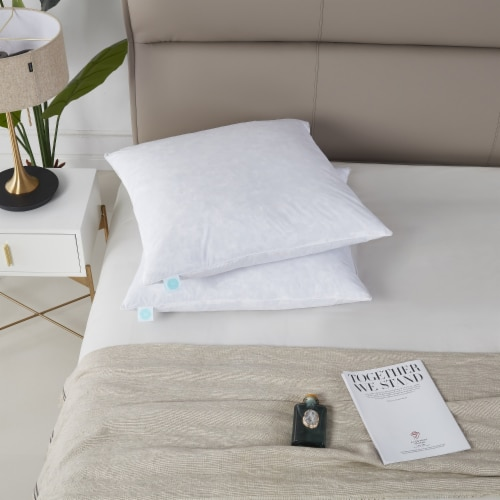 Martha Stewart Euro Feather Pillow - 26 in x 26 in Perspective: front