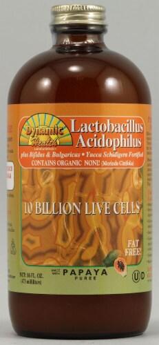 Dynamic Health Lactobacillus Acidophilus Papaya Perspective: front