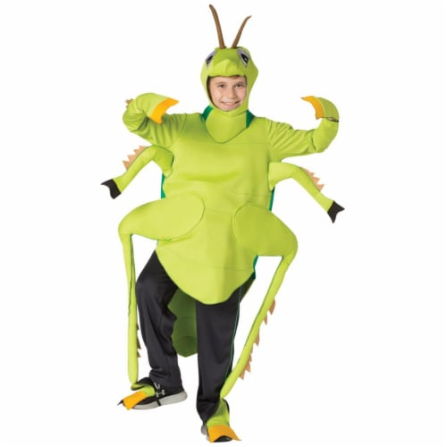 Morris Costumes GC3112710 Grasshopper Child Costume, Size 7-10 Perspective: front