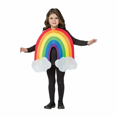 Morris GC630746 Rainbow Child Costume, Size 4-6X Perspective: front
