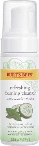 Burt's Bees Skin Nourishment Gentle Foaming Cleanser Perspective: front