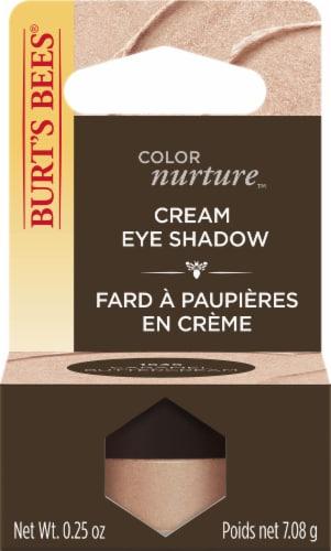 Burt's Bees ColorNurture Caramel Buttercream Cream Eye Shadow Perspective: front