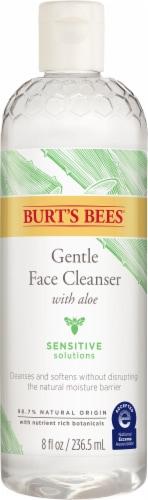 Burt's Bees Gentle Facial Cleanser Perspective: front