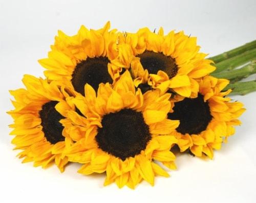 Sunflower Bouquet Perspective: front