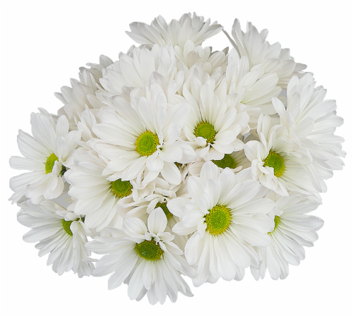 White/Green Poms Perspective: front