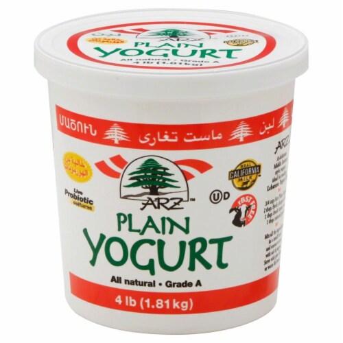 Karoun Dairies Plain Yogurt Perspective: front