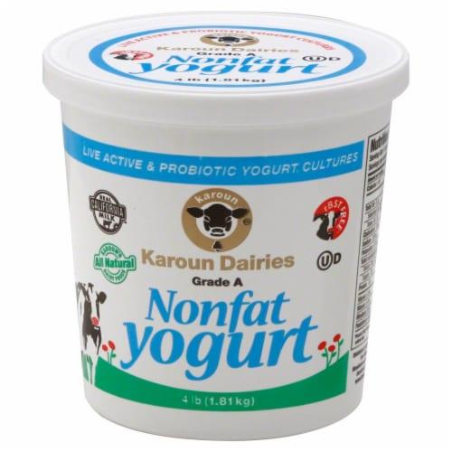 Karoun Dairies Nonfat Yogurt Perspective: front