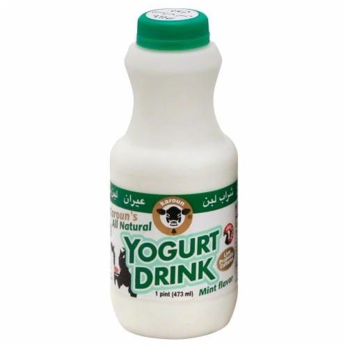 Karoun Mint Flavor Yogurt Drink Perspective: front