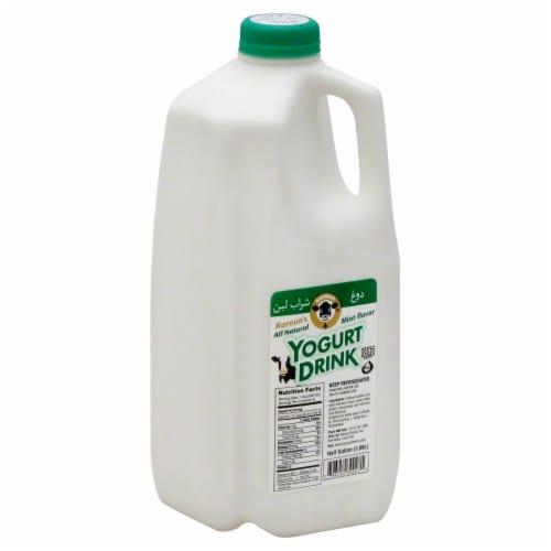 Karoun Dairies Mint Flavor Yogurt Drink Perspective: front