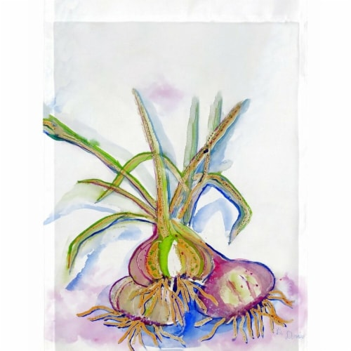 Betsy Drake FL1101G 28 x 40 in. Vidalia Onions Flag Perspective: front