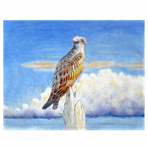 Betsy Drake PM1109 Osprey Storm Place Mat - Set of 4 Perspective: front