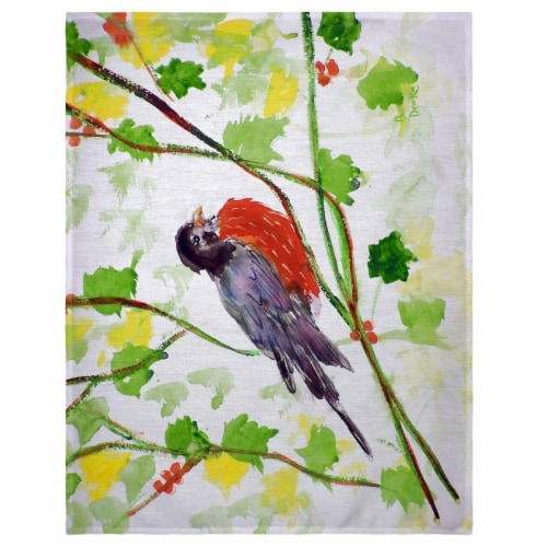 Betsy Drake PM164 14 x 18 in. Robin Place Mat - Set of 4 Perspective: front