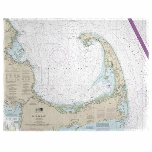 Betsy Drake PM13246 14 x 18 in. Cape Cod Bay, MA Nautical Map Place Mat - Set of 4 Perspective: front
