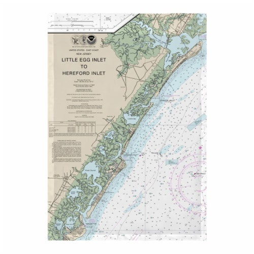 Betsy Drake FL12318AV 12.5 x 18 in. Little Egg Inlet to Hereford Inlet - Avalon, NH Nautical Perspective: front