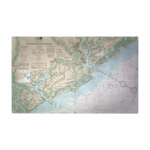 Betsy Drake DM11521G 30 x 50 in. Charleston Harbor & Approaches, SC Nautical Map Large Door M Perspective: front