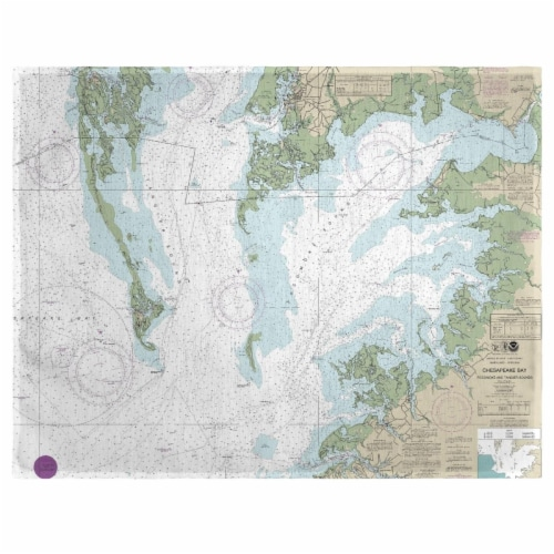 Betsy Drake PM240CH 14 x 18 in. Chesapeake Bay - Pocomoke & Tangier Sounds, VA Nautical Map P Perspective: front
