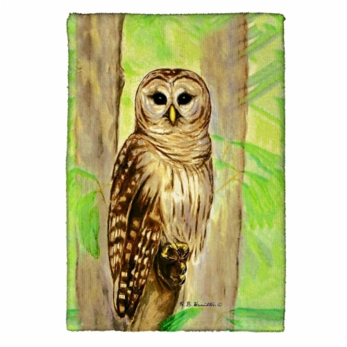 Betsy Drake KT240 Owl Kitchen Towel Perspective: front