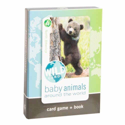 Bird Cage Press Wild Cards, Baby Animals Perspective: front