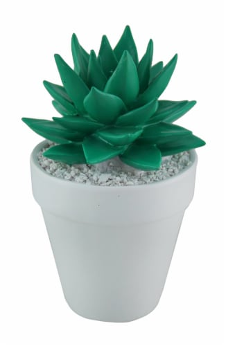 Bright Green Mini Ceramic Succulent in White Round Planter Perspective: front