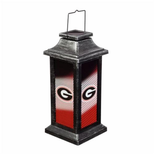 University of Georgia Solar Garden Lantern Perspective: front