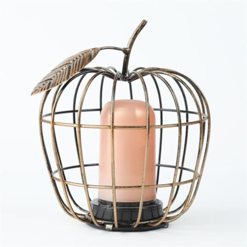 Luxen Home WHDL407 7.5 in. Iron Apple Cage LED Lantern Perspective: front