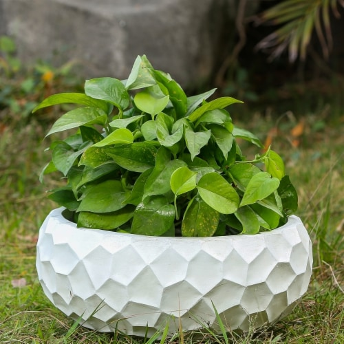 Luxen Home WHPL506 16.9 in. Dia. MgO Fiberclay Wavy Planter  White Perspective: front