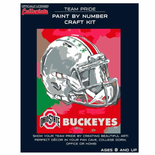 Ohio State Buckeyes Team Pride Paint by Number Craft Kit Perspective: front