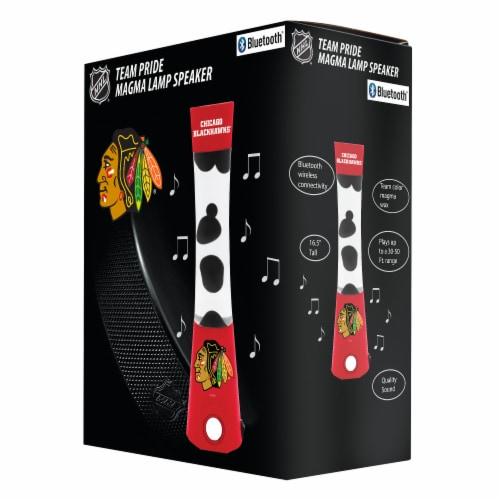 NHL Chicago Blackhawks Team Pride Magma Lamp Speaker Perspective: front