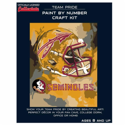 Florida State Seminoles Team Pride Paint by Number Craft Kit Perspective: front