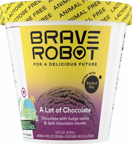 Brave Robot A Lot of Chocolate Non-Dairy Frozen Dessert Perspective: front