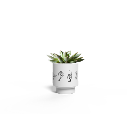 LiveTrends Sign Language Potted Succulent (Approximate Delivery is 2-5 Days) Perspective: front
