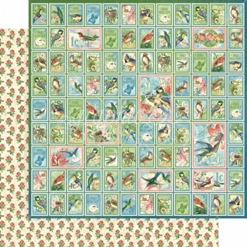 Bird Watcher Double-Sided Cardstock 12 X12 -Best Friends Perspective: front