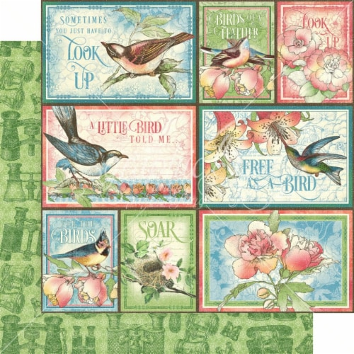 Bird Watcher Double-Sided Cardstock 12 X12 -Learn To Fly Perspective: front