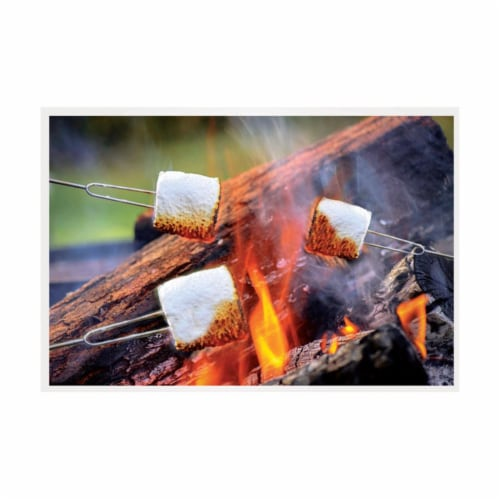 Blazing LEDz 9784596 Open Flame Roasting Extendable Marshmallow Fork, Plastic & Stainless Ste Perspective: front