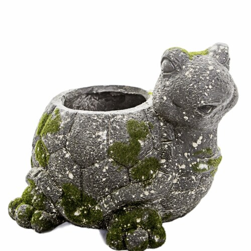 HISC 3779 Moss Animal Planter - Turtle Perspective: front