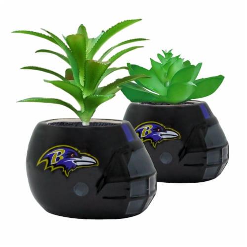 Baltimore Ravens Team Pride Mini Faux Succulents in Ceramic Helmet Planters Perspective: front
