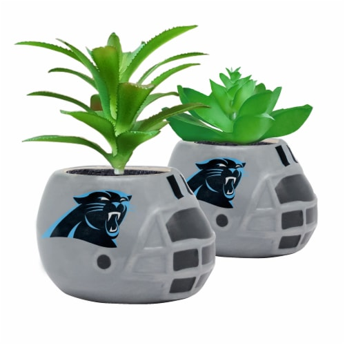 NFL Carolina Panthers Team Pride Mini Faux Succulents in Ceramic Helmet Planters Perspective: front