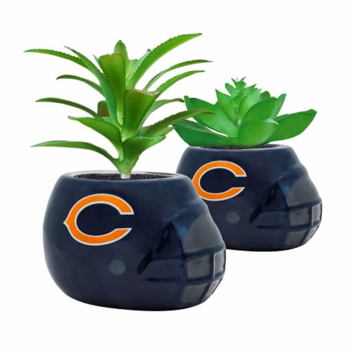 NFL Chicago Bears Team Pride Mini Faux Succulents in Ceramic Helmet Planters Perspective: front